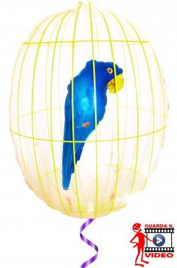 Gabbietta gonfiabile con pappagallo a palloncino a elio con uccello all'interno