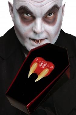 Denti canini da vampiro centrali ravvicinati Nosferatu, Fester
