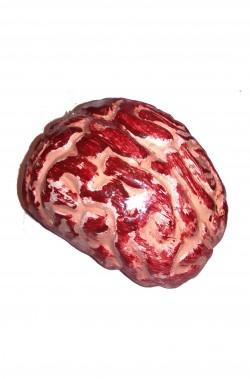 Cervello umano Halloween