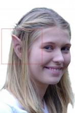 Protesi orecchie hobbit e elfo in lattice sotile con colla medie circa cm 8