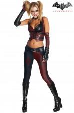 Costume Harley Quinn Arkham City