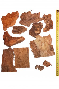 Ambientazione presepe: set pezzi in sughero naturale
