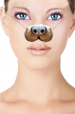 Naso finto cane per adulto in lattice