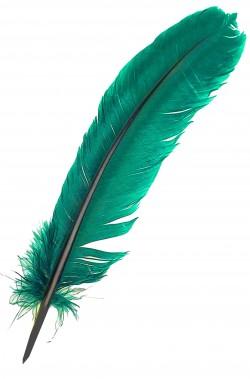 Piuma singola per indiano pellerossa verde