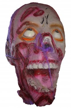 Decorazione Halloween testa di morto mozzata in lattice