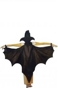 Ali da pipistrello vampiro nere