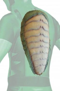 Carapace scudo da tartaruga o rettile dinosauro in schiuma