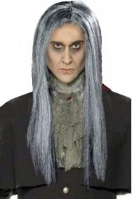 Parrucca grigia liscia lunga senza frangia