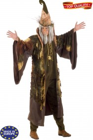 Coppia di vestiti di Halloween Mago e Strega