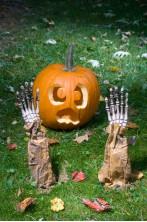 Decorazione Halloween da giardino:mani scheletro che escono da terra Zio Fester