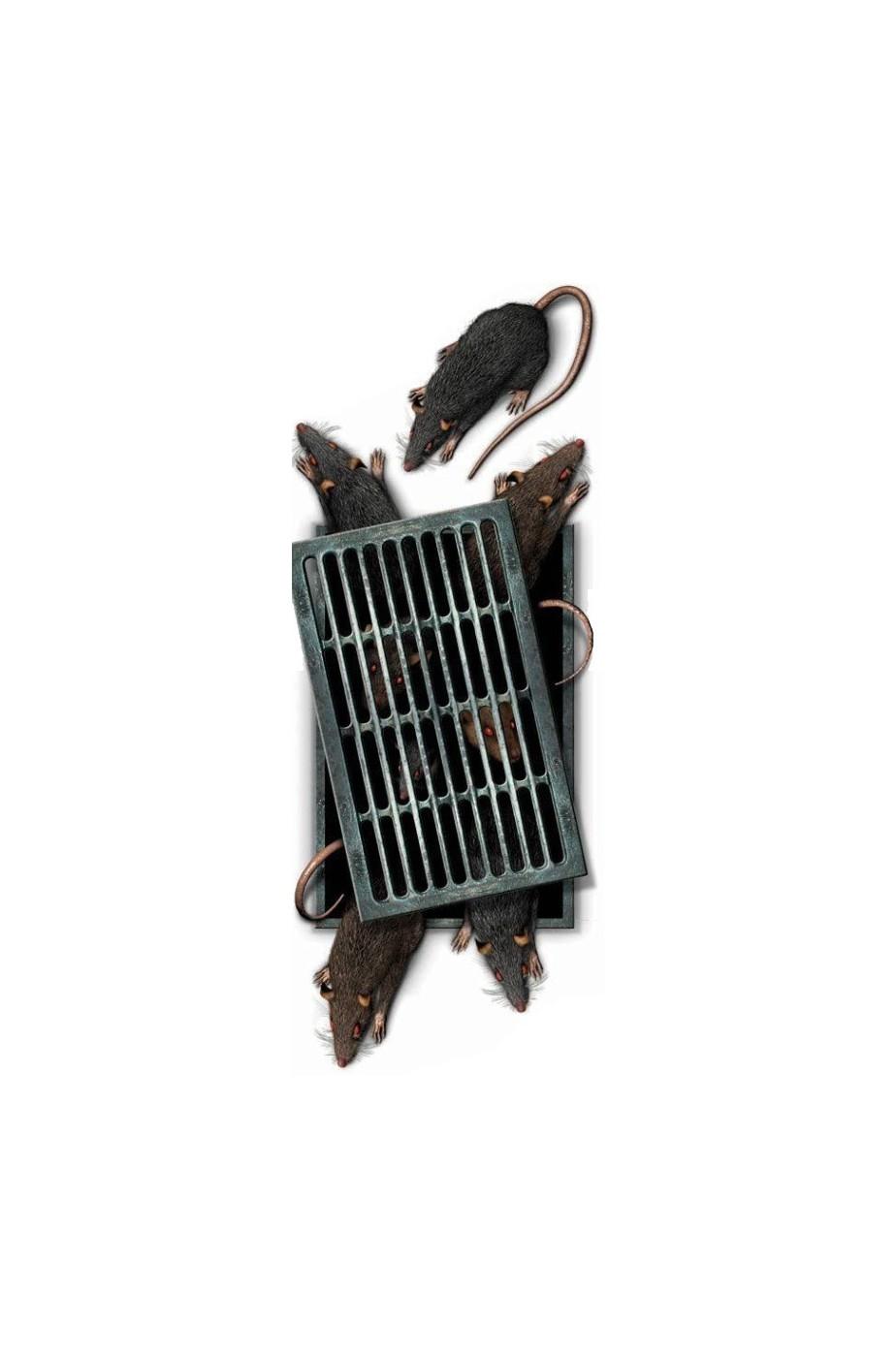 Decalcomania da pavimento Halloween tombino con ratti