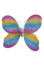 Ali farfalla 48x53