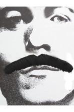 Trucco: Baffi finti a spazzola lunghi Anni 70 neri Bart