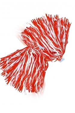 Pom Pom rossi e bianchi da cheerleader