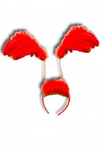 Ali rosse a cerchietto