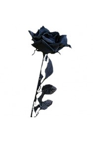 Rosa nera per ogni travestimento Halloween, Morticia, streghe ecc.