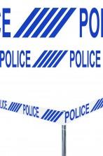 Nastro per feste e party pvc Police 6 m