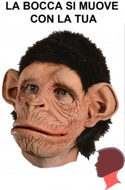 Maschera scimpanzè qualità professionale a tutta testa
