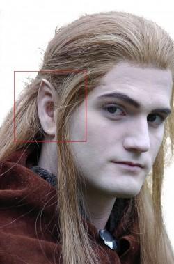 Protesi orecchie hobbit e elfo piccole in lattice sottile con colla circa cm