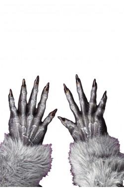 Guanti lupo o creatura halloween grigi con pelo adulto