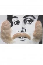 Trucco: Set Baffi e basettoni biondi anni 70