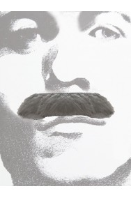Baffi finti a spazzola grigi Gent Menjou