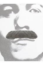 Trucco: Baffi finti a spazzola grigi Gent Menjou