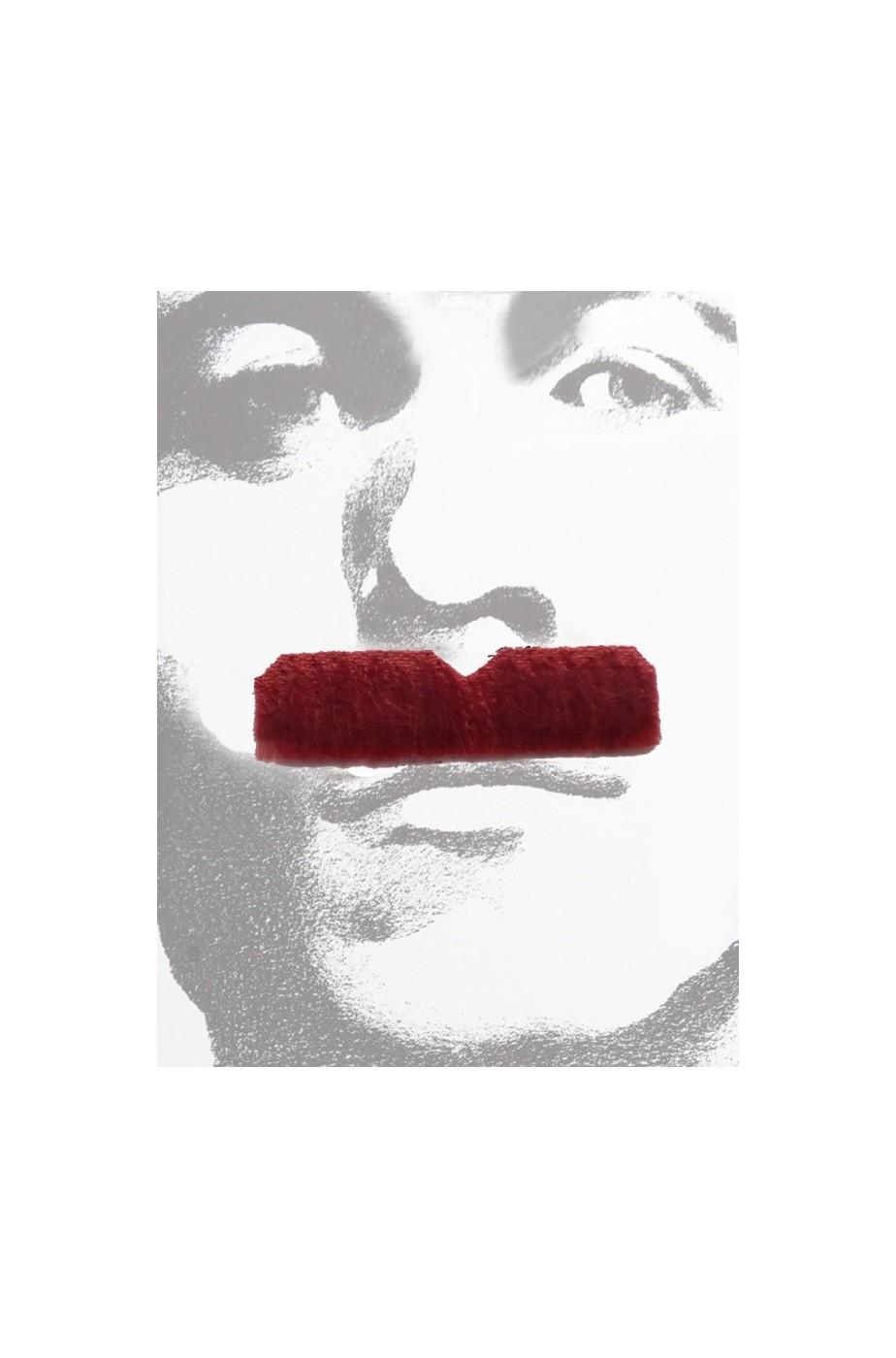 Baffi finti a spazzola rossi Gent Menjou