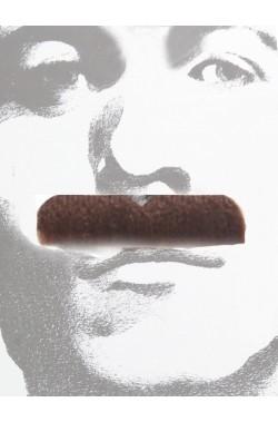 Trucco: Baffi finti a spazzola marroni Gentiluomo