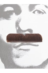 Baffi finti a spazzola marroni Gent Menjou