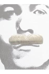 Baffi finti a spazzola bianchi Gent Menjou