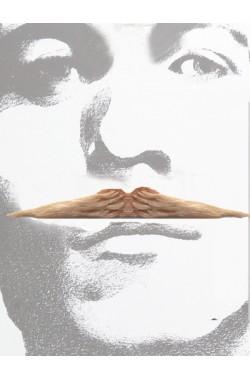 Trucco: Baffi sottili tipo Zorro biondi Flott