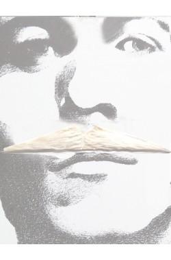 Baffi sottili tipo Zorro bianchi Flott