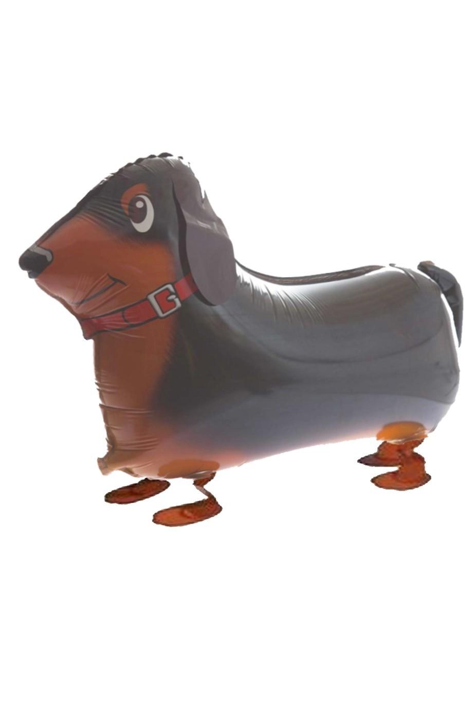 Animaletto gonfiabile che cammina: cagnolino marrone