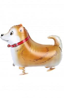 Animaletto gonfiabile che cammina: cagnolino volpino