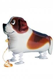 Animaletto gonfiabile che cammina: cagnolino sanbernardo